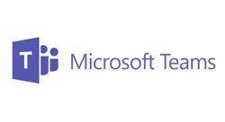 Logo-Microsoft-Teams-Servers-Software